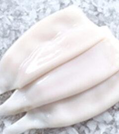 squid-tubes